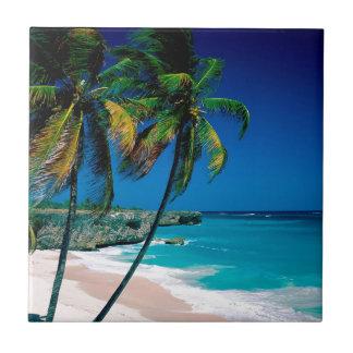 Bahía inferior Barbados de la playa Azulejo Cuadrado Pequeño