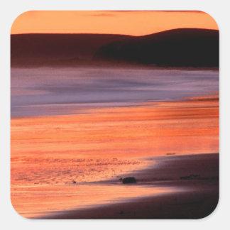 Bahía Marin de los Drakes de la puesta del sol de Pegatina Cuadrada