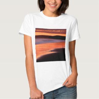 Bahía Marin de los Drakes de la puesta del sol de Polera
