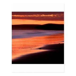 Bahía Marin de los Drakes de la puesta del sol de Postal