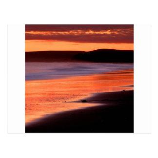 Bahía Marin de los Drakes de la puesta del sol de Tarjeta Postal