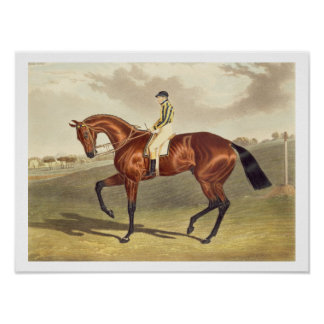 Bahía Middleton, ganador del Derby en 1836, despué Posters