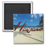 Bahía Oahu Hawaii de Hanauma