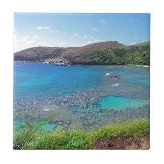 Bahía Oahu Hawaii de Hanauma Azulejo Cuadrado Pequeño