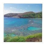 Bahía Oahu Hawaii de Hanauma Tejas Ceramicas