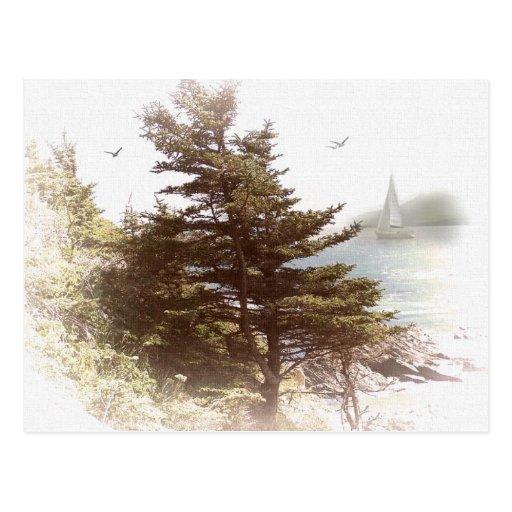 Bahía Oregon de los Coos Postales
