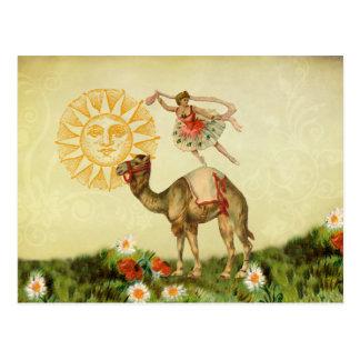 Bailarín del vintage en un camello tarjetas postales