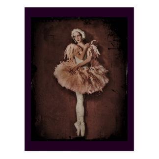Bailarina del lago swan