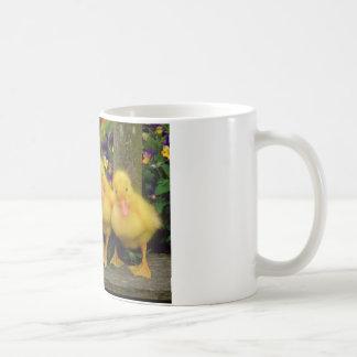 Bailarines amarillos del pato taza de café