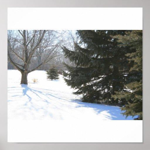 Baile azul de la sombra en nieve póster