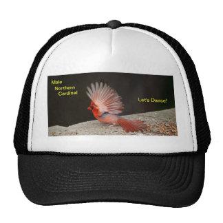 Baile cardinal masculino del sombrero gorras