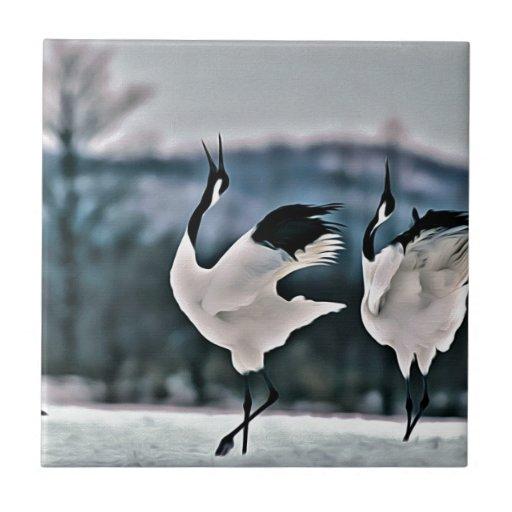 Baile de dos pájaros azulejos