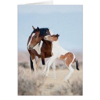 Baile en la tarjeta de felicitación del caballo sa