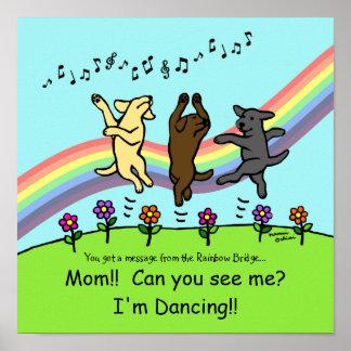 Baile Labradors en el puente del arco iris Poster