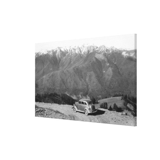 Bailey Range from Hurricane Ridge Olympics Canvas Print