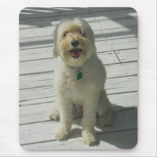 Bailey the Beautiful Dog on the Deck Mouse Pad