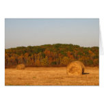Bails of Hay Card