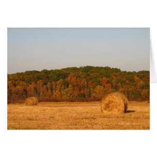 Bails of Hay Greeting Cards