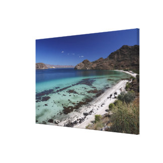 Baja Conception Bay Canvas Print