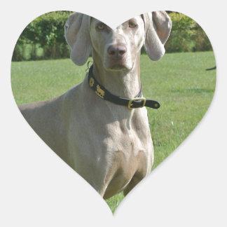 Bajá Pegatina En Forma De Corazón