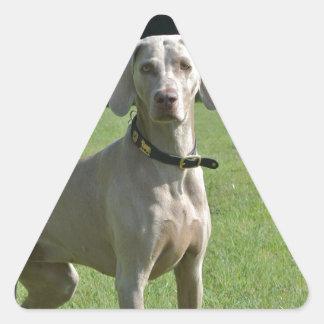 Bajá Pegatina Triangular