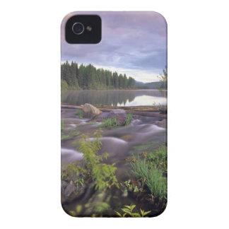Baje el lago Stillwater en el nacional de cabeza Funda Para iPhone 4 De Case-Mate