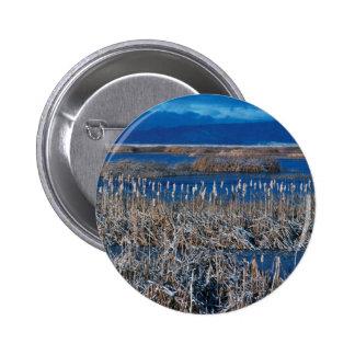 Baje la reserva del nacional de Klamath Pin