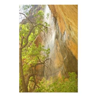 Baje la roca roja y el árbol de la cascada esmeral impresiones fotográficas