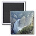 Baje las caídas, barranco del río Yellowstone Imanes