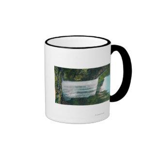 Baje las caídas nupciales del velo en el río de Co Tazas De Café