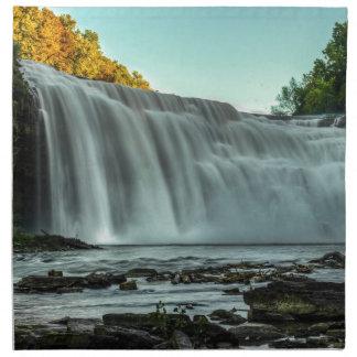 Baje las caídas, río de Genesee Servilleta De Papel