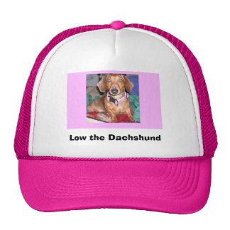 Bajo el gorra del Dachshund