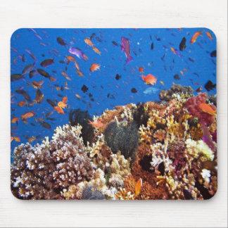 Bajo escenas acuáticas de los pescados del mar alfombrilla de ratones