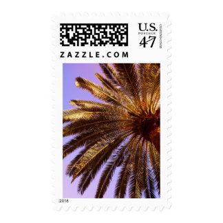 Bajo frounds de la palma sello postal