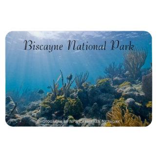Bajo la superficie del mar, parque nacional de Bis Iman Flexible