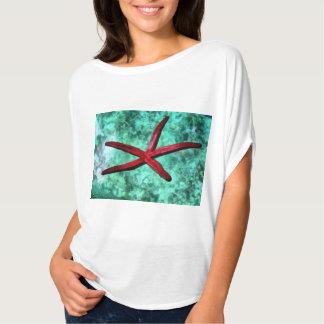Bajo vientre de una estrella de mar playera
