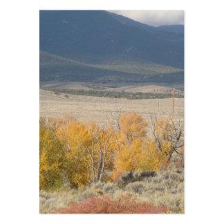 Baker, Nevada Large Business Cards (Pack Of 100)