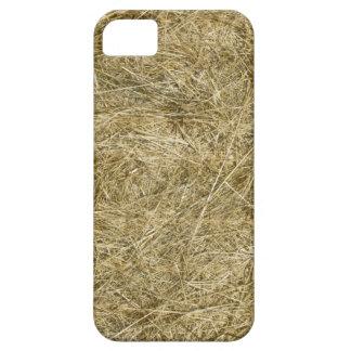 Bala de heno iPhone 5 protectores