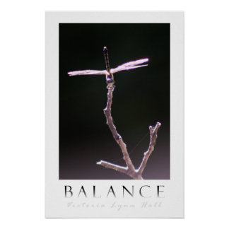 """Balance"" Dragonfly Photography Poster"