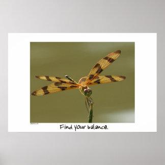 Balance Dragonfly Poster Print