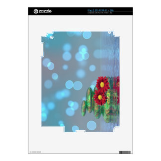 Balance pebbles with flowers skins for iPad 2