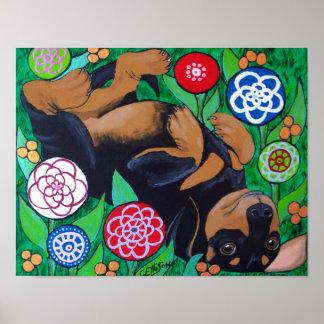 Balanceo del Dachshund en la impresión de las flor Póster