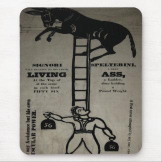 Balancing a Living Donkey - Mousepad