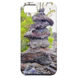Balancing Act iPhone SE/5/5s Case