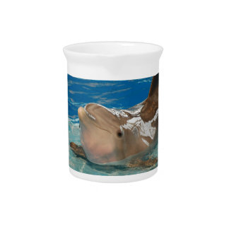 Balancing Dolphin Beverage Pitcher