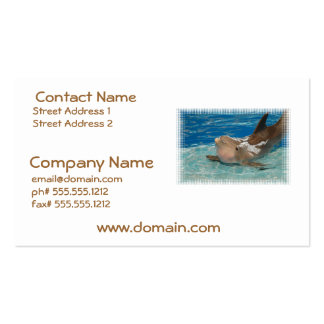 Balancing Dolphin Double-Sided Standard Business Cards (Pack Of 100)
