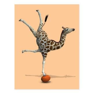 Balancing Giraffe Postcard
