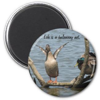 Balancing 2 Inch Round Magnet