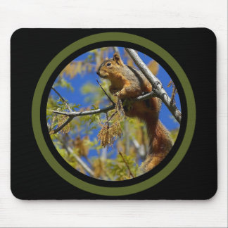 Balancing Squirrel - Multi Frame Mouse Pad
