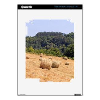 Balas de heno a lo largo del EL Camino, España Pegatinas Skins Para iPad 3